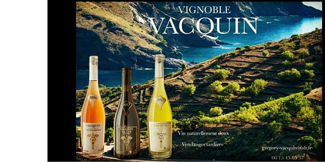 Académie Lax Perpignan annonce une dégustation gratuite des vins du vignoble Vacquin le 9 avril à 18h.